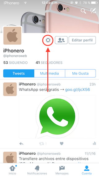 desactivar reproduccion automatica videos twitter iphone 2